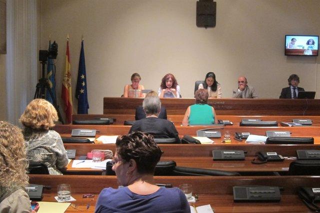 Comisión Esther Díaz