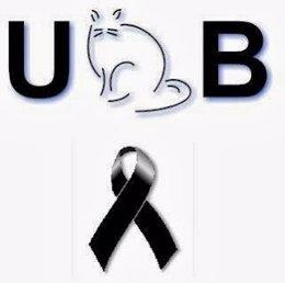 Entidad UB Gats