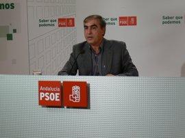 El PSOE insta a Sanidad a que haga una investigación de la alta inspección sobre las mamografías preventivas en Madrid