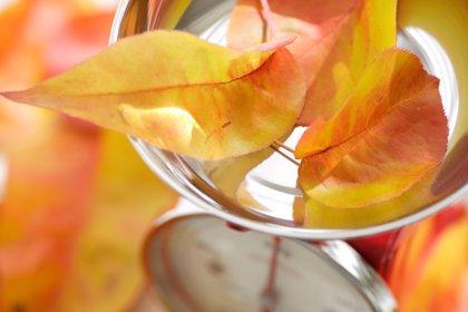 3 recetas saludables y baratas de otoño