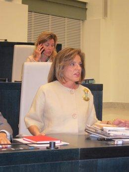 Ana Botella En El Pleno Del Ayuntamiento De Madrid