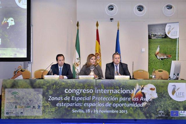 La consejera de Medio Ambiente, María Jesús Serrano, en la inauguración