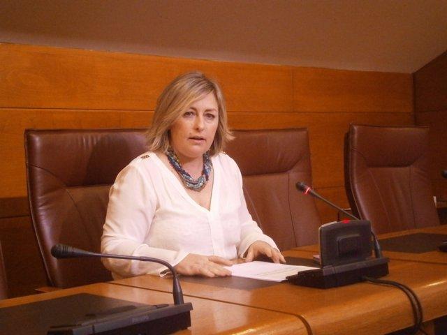 Ana Isabel Méndez, diputada del PSOE
