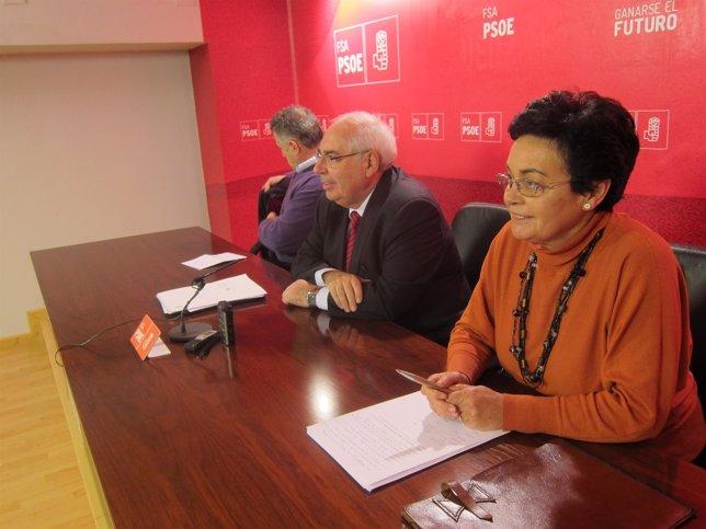 Vicente Álvarez Areces y Dolores Guerra, durante la rueda de prensa.