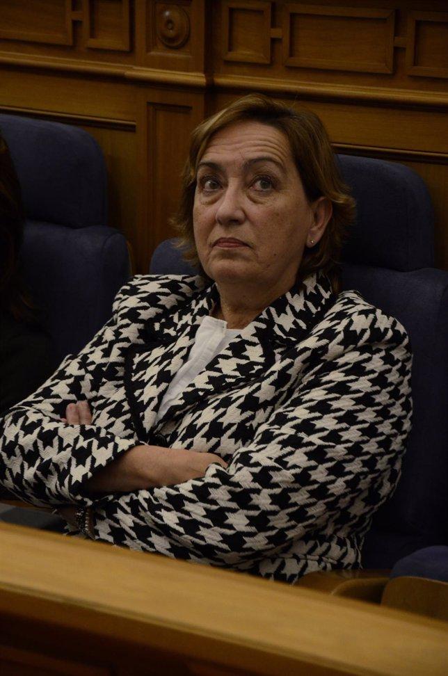 Soriano en el Pleno