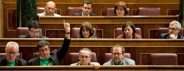 Grupo Parlamentario de la Izquierda Plural en el Congreso