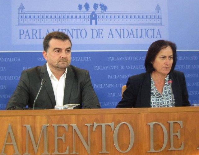 Antonio Maíllo y Rosalía Martín, hoy en rueda de prensa