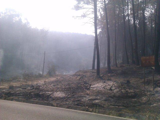 Incendio forestal en Oia