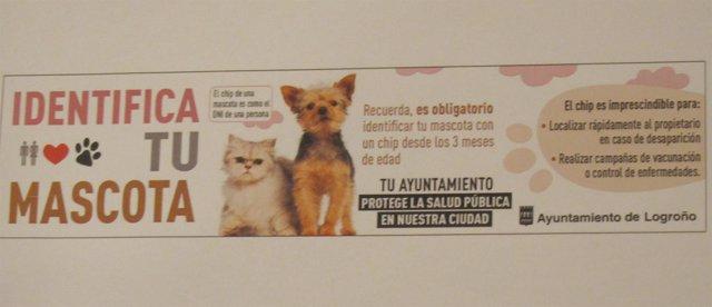 Cartel de la campaña municipal