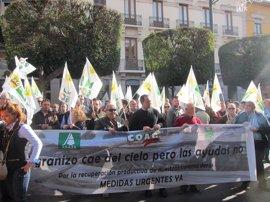 """Organizaciones agrarias ven decreto-ley """"respuesta"""" a los afectados por granizo y creen que los """"tranquiliza"""""""