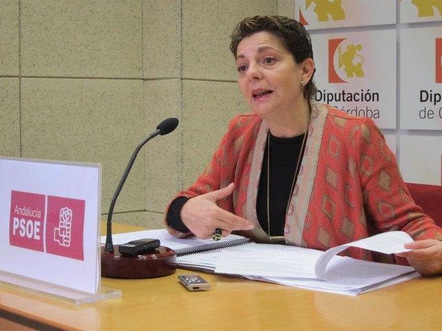 La portavoz adjunta del PSOE en la Diputación, Isabel Niñoles