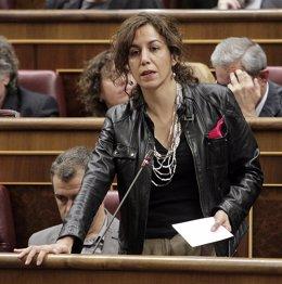Irene Lozano, diputada de UPyD