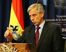El vicepresidente boliviano, Álvaro García Linera.