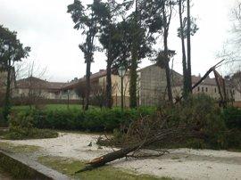 El temporal deja en Galicia más de 900 incidencias