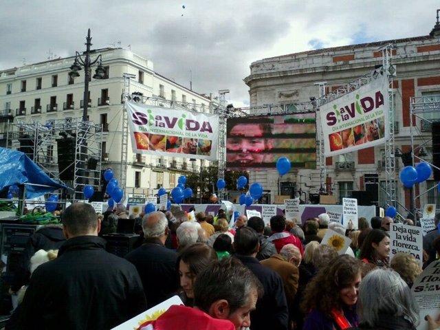 Manifestación provida en Madrid 6-4-2013