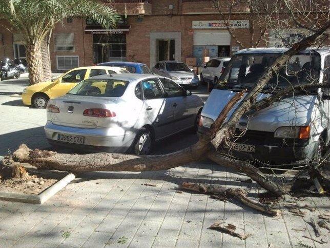 Emergencias recibe más de 150 llamadas relacionadas con las fuertes viento