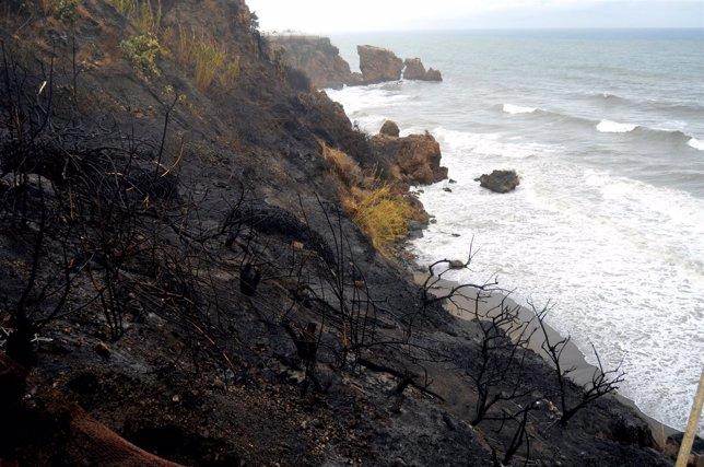 Incendio en la playa de La Caleta de Maro