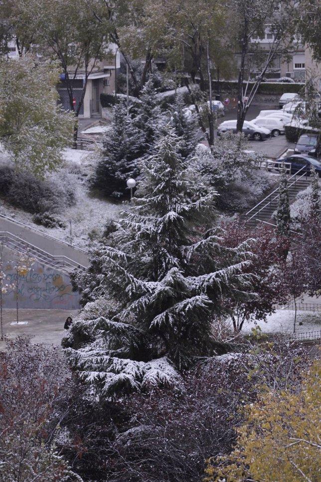 Nieve, frío, hielo, nevada, temporal