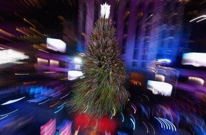 EEUU.- Una mujer coloca 76 árboles de Navidad en casa, incluido el baño