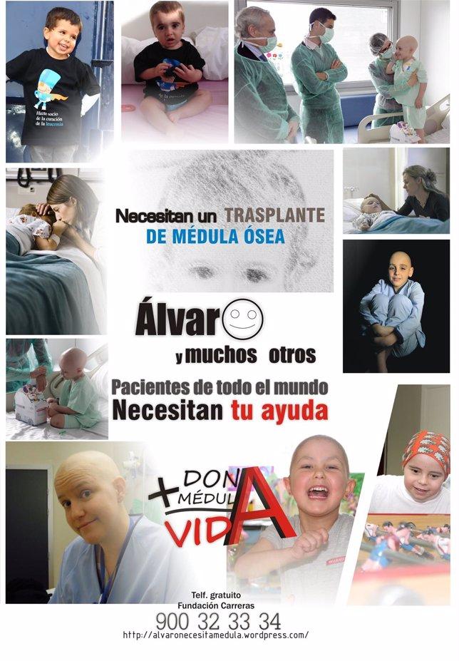 Cartel anunciador de un evento para donación de médula ósea.