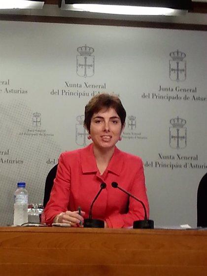 """El PP reclama al Principado una """"profunda reforma"""" de la Administración asturiana para hacerla """"eficiente y austera"""""""