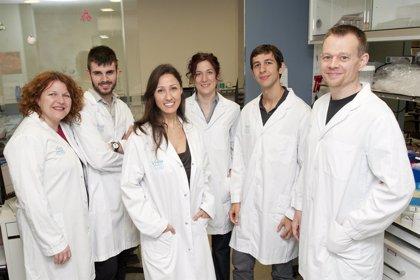 Investigadores del VHIO logran fondos europeos para investigar fármacos inhibidores de la proteína Myc