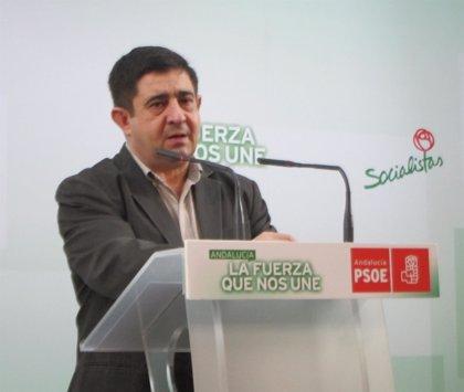 """PSOE urge a Arias Cañete a """"rectificar"""" para incluir al aceite en pagos asociados de la PAC"""