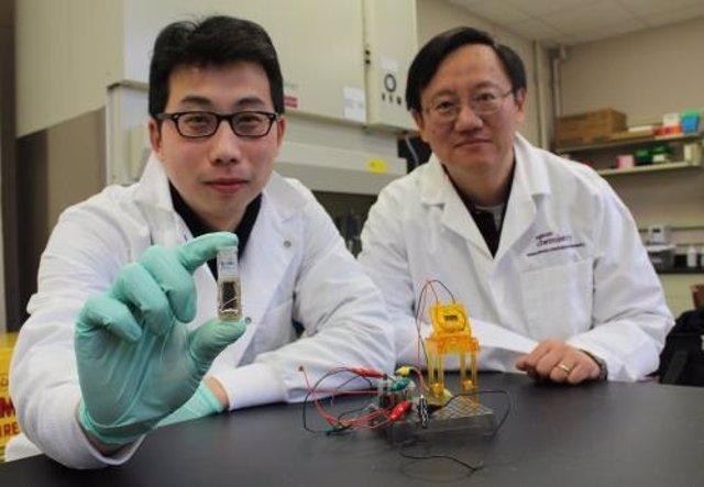 Científicos desarrollan una batería de azúcar