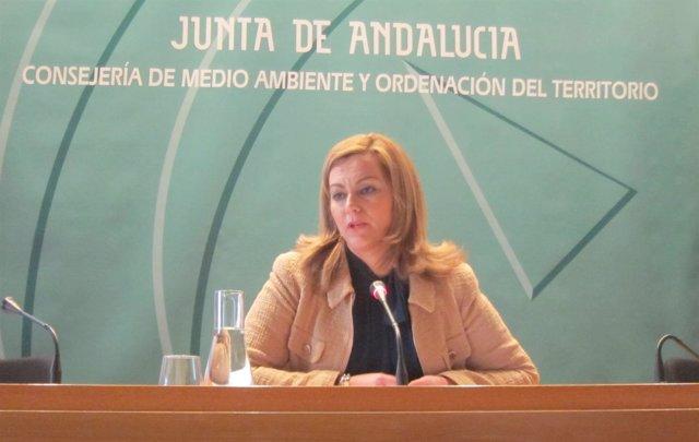 La consejera de Medio Ambiente y Ordenación del Territorio, María Jesús Serrano