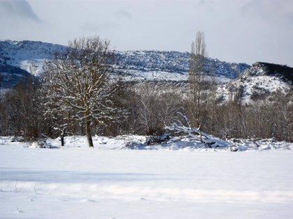 Nevadas en el norte de León