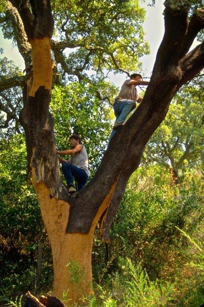 Castellar archiva el plan especial de uso de La Almoraima por no ser legal