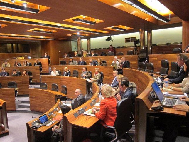 Pleno de la Junta General 22 noviembre 2013