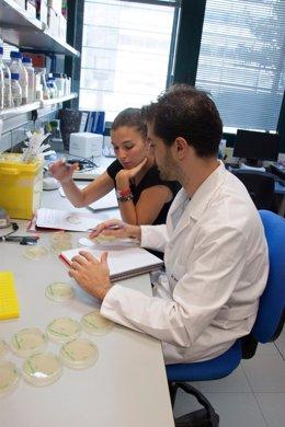 Investigadores trabajando en su laboratorio