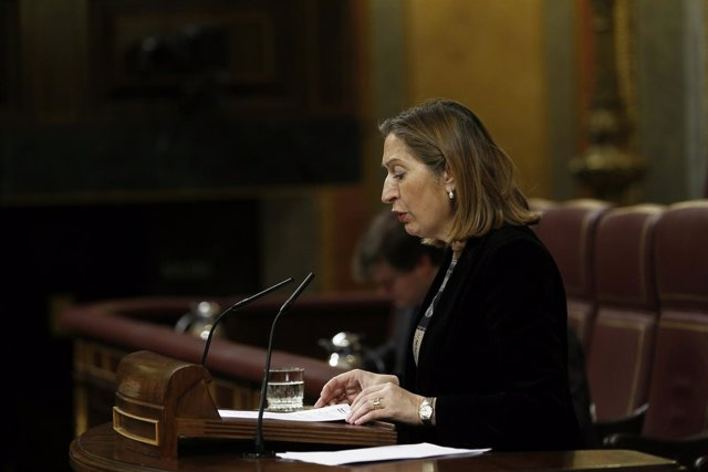 La ministra Ana Pastor en el Congreso