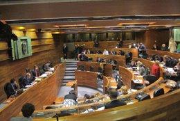 Pleno de la Junta General enero 2014