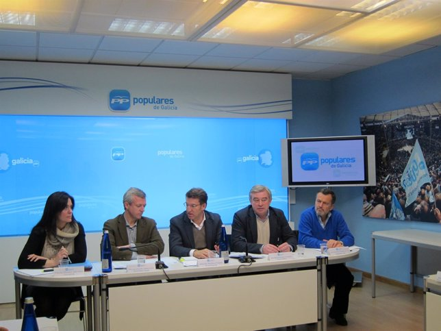 Comité de dirección del PPdeG