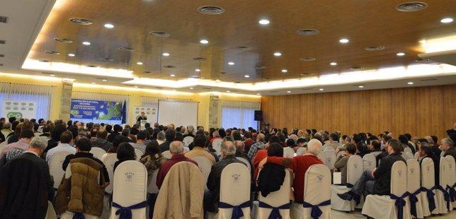 Convención Nacional de CxG