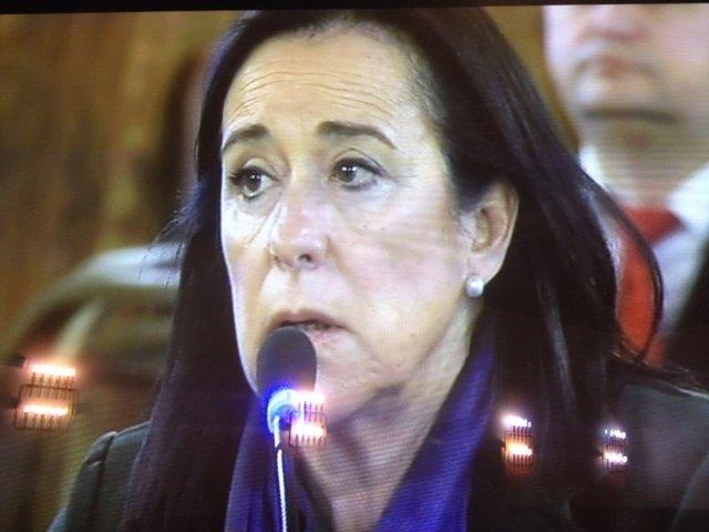 Pilar Collado declara como testigo en el TSJCV