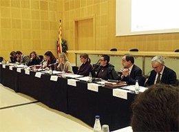 Pleno del Consell General de Serveis Socials de Catalunya