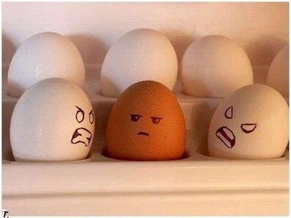 ¿Podemos comer un huevo cada día?