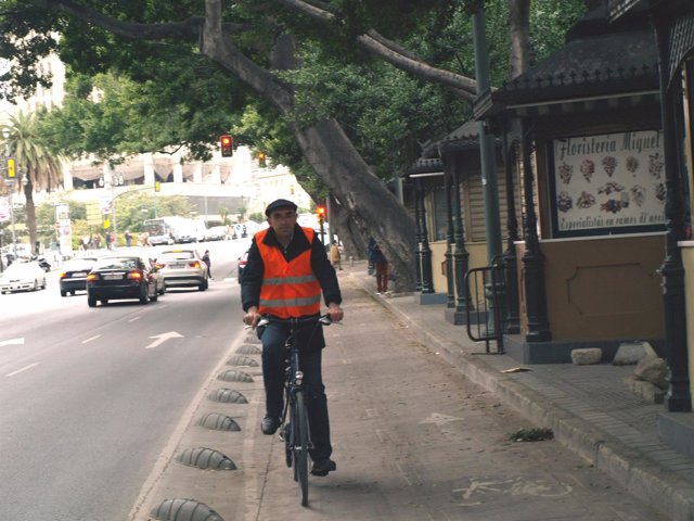 Zorrilla circula por el carril bici de la Alameda Principal.