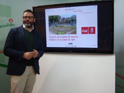 PSOE propone la creación en Jaén de una red de unos 2.000 huertos urbanos en parcelas de suelo público disponible