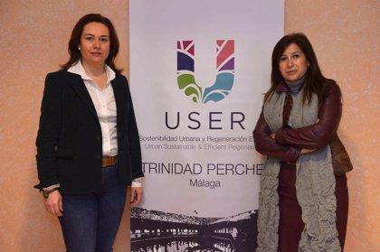 """El deterioro de edificios y el paro por encima del 62%, problemas """"estructurales"""" de La Trinidad y El Perchel"""