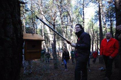 La Comunidad colocarán trampas de feromonas y mil cajas nidos para luchar contra plagas forestales en el Parque Nacional