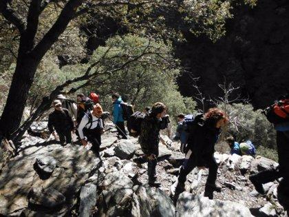 La UJA programa actividades en la naturaleza y acoge la segunda edición provincial de la Olimpiada de Geología