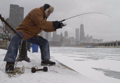 Un pez se ha convertido en el enemigo del lago Michigan