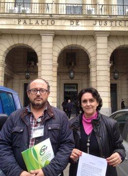 Csif formaliza su denuncia contra la gerencia del Virgen del Rocío