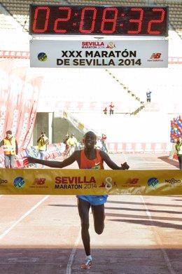 Maratón Sevilla Lagat
