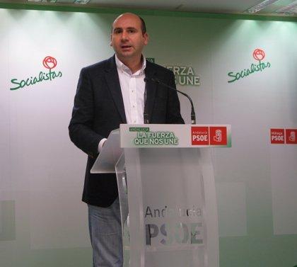 """Conejo (PSOE-A) defiende que """"Andalucía debe contribuir a reiniciar Europa"""""""