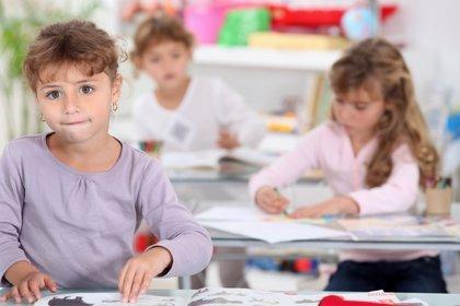 La excelencia educativa en los colegios